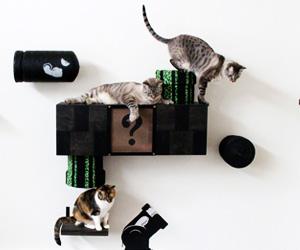 estanteria-mario-cat