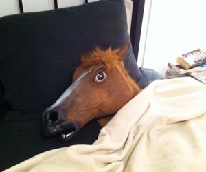 mascara-caballo-loco